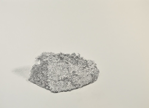 Judith Kester One object, 6 views. No. 2. Graphite on paper. 2016