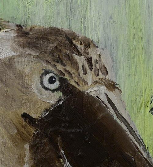 Tim Ridley: Shoebill Eye (crop)
