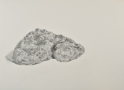 Judith Kester One object, 6 views. No. 5. Graphite on paper. 2016
