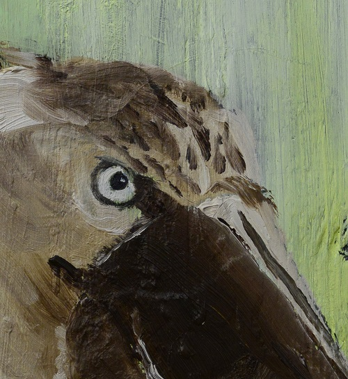 Tim Ridley: Shoebill Eye (crop)